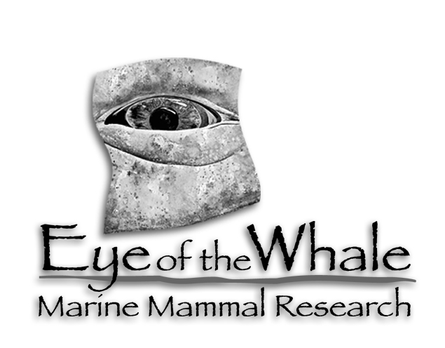 eye of the whale logo